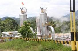 PLN Garap Pembangkit Listrik Tenaga Panas Bumi Gunung Ungaran