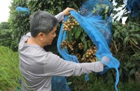 Dana Desa Riau 2018 Hanya Terserap 56,3% atau Rp709 Miliar