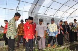 Wali Kota Bandar Lampung Sebar Ribuan Benih Ikan di Itera