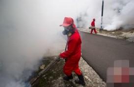 Kasus DBD Terus Bertambah, Kemenkes Minta Warga Aktif Berantas Sarang Nyamuk