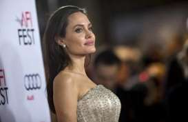 Angelina Jolie Desak Myanmar Akhiri Kekerasan terhadap Muslim Rohingya