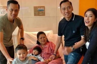 Sakit, Ani Yudhoyono Dapat Ucapan Doa dari Jokowi Hingga PM Singapura