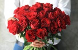 5 Berita Terpopuler Lifestyle, Tips Memberi Bunga Saat Valentine dan Ini Obrolan Soal Bisnis dengan Alicia Keys