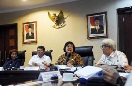 Menteri LHK: Pemulihan Lingkungan Era Jokowi Dilakukan dengan Berani