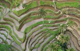 Gubernur Bali Segera Atur Pertanian Organik, Kantong Plastik & Kendaraan Listrik