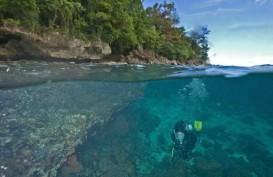'Underwater Photo Competition', Tawarkan Hadiah Rp150 Juta
