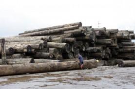 Pasokan Kayu Bulat Dari Hutan Tanaman Industri Diyakini…