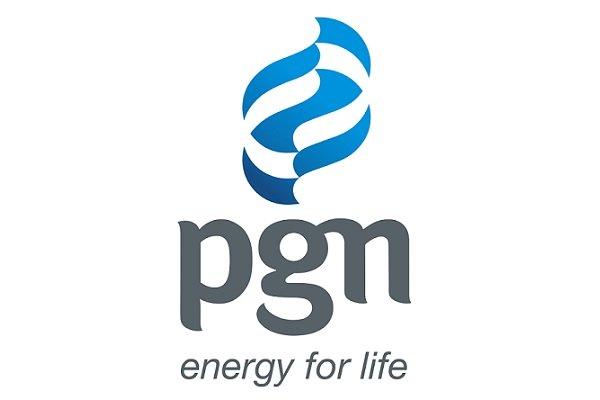 Logo PGN / repro