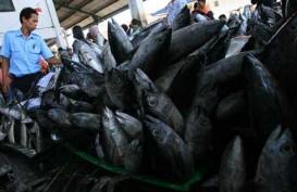 KKP Siapkan Rp53 Miliar untuk Bantuan Benih Ikan