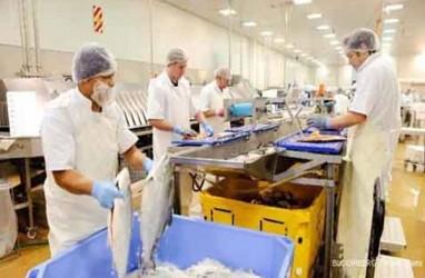 Suplai Bahan Baku Dorong Utilisasi Industri Pengolahan Ikan
