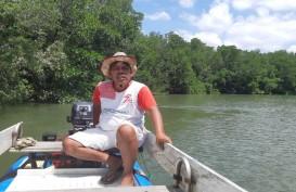 Sosok Pegiat Mangrove & Pelindung Habitat Bekantan
