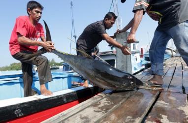 Ekspor Perikanan Maluku ke Jepang Dimudahkan