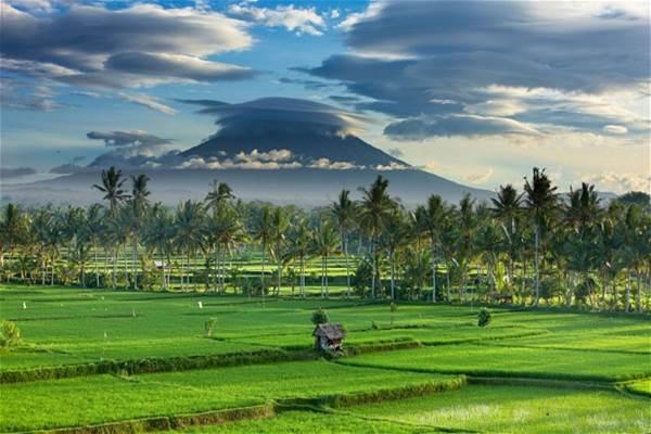 Ubud - Indonesia Travel