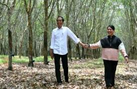 Malam Minggu, Jokowi Posting Foto Romantis Bersama Iriana