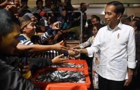 5 Fakta Pasar Ikan Muara Baru Seperti Impian Jokowi