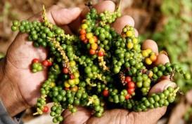 Pertumbuhan Perekonomian Sulawesi Barat Capai 6,23 Persen