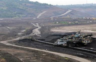 KLH Didesak Larang Jalan Tambang Batu Bara di Hutan Harapan