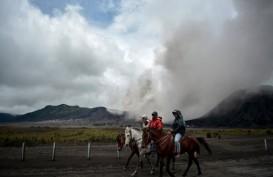 Aktivitas Gunung Bromo Fluktuatif, Masih Aman Dikunjungi
