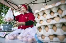 Toko Tani Indonesia Sukses Stabilkan Harga Pangan…