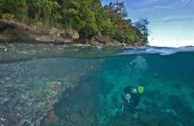 Penetapan KEK Tanjung Pulisan Diprediksi Mundur dari Tenggat
