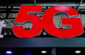 Wow Sapi-Sapi di Inggris Sudah Menikmati Jaringan 5G