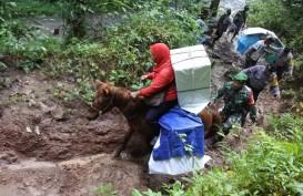 Distribusi Surat Suara di Jember Libatkan Kuda