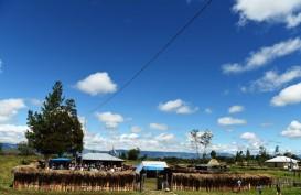 Pemadaman Listrik Bergilir di Manokwari Urung Dilakukan