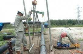 Petrosea (PTRO) Tebar Dividen US$8,72 Juta