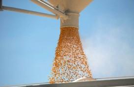 Genjot Produksi Jagung di China, Cargill Investasi US$112 Juta
