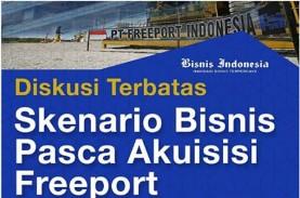 Saham Freeport: Pembentukan BUMD Papua Masih Tunggu…