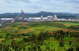 Tunggu Kajian ESDM, Pabrik Semen di Kutai Timur Siap Dibangun