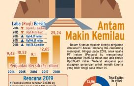 Rencana Antam, dari Dongkrak Produksi sampai Serap Saham Divestasi Vale Indonesia