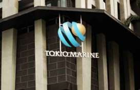 Asuransi Tokio Marine Indonesia Catatkan Pertumbuhan Laba 9,03%