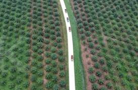 Kembalikan 2.800 Ha Kebun, PTPN V Relokasi 416 Keluarga Karyawan