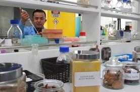 LIPI Kembangkan Bahan Baku Farmasi dari Tanaman Obat