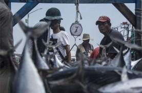 Tingkat Konsumsi Ikan di Jateng Masih Rendah