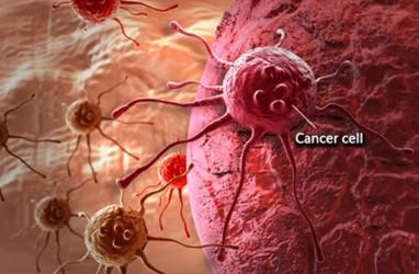 5 Terpopuler Lifestyle, Ilmuwan Inggris Berupaya Kendalikan Kanker dan Bahaya Medsos Menurut Selena Gomez