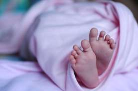 Mahasiswi Asal Ponorogo Lahirkan Bayi Perempuan di…