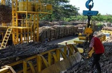 Revitalisasi Pabrik Jadi Solusi Dorong Produksi Gula