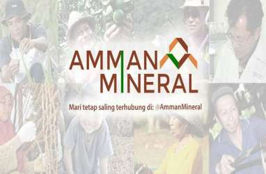Amman Mineral Nusa Tenggara Masih Buka Kesempatan Kerja Sama Pembangunan Smelter