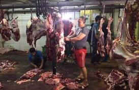 Mentan Amran Berencana Tukar Manggis dengan Daging Sapi Brasil
