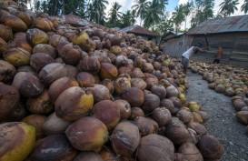 Sulut Akan Genjot Ekspor Kelapa ke Filipina