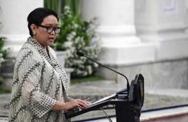 Ini Butir-Butir Kemitraan Ekonomi dalam Bilateral RI-Suriname