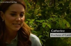 Kate Middleton Pamer Keterampilan Berkebun di Chelsea Flower Show
