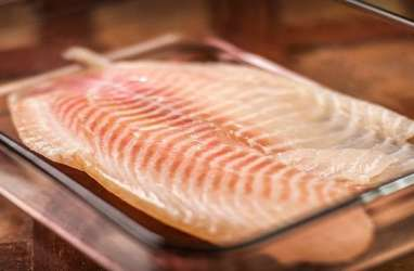 Ragam Manfaat Gizi Ikan Tilapia