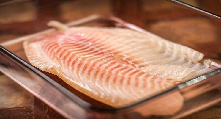 Daging ikan tilapia - Istimewa