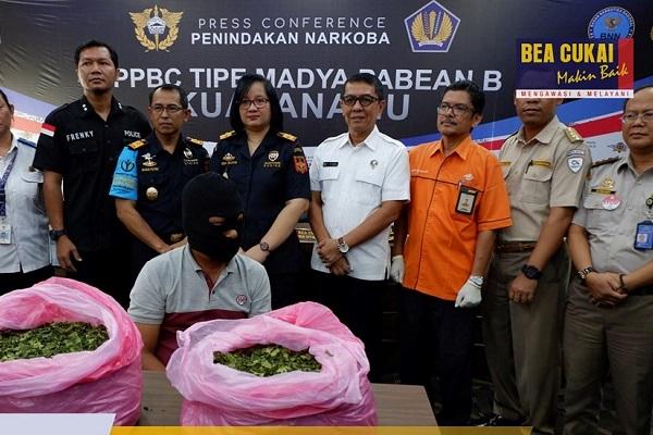 Bersinergi dengan dan Ditres Narkoba Polda Sumatera Utara Bea Cukai Gagalkan Penyelundupan 16kg Daun Khat