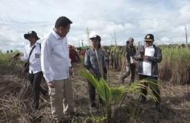 BRG Siapkan Paket Bantuan Revitalisasi Ekonomi Mappi & Merauke