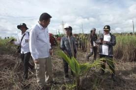 BRG Siapkan Paket Bantuan Revitalisasi Ekonomi Mappi…