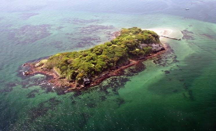 Pulau Sarushima, sebuah pulau terpencil di Teluk Tokyo. - Istimewa